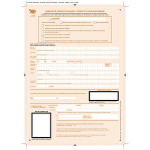 Demande de permis de conduire - format de l'Union Européenne